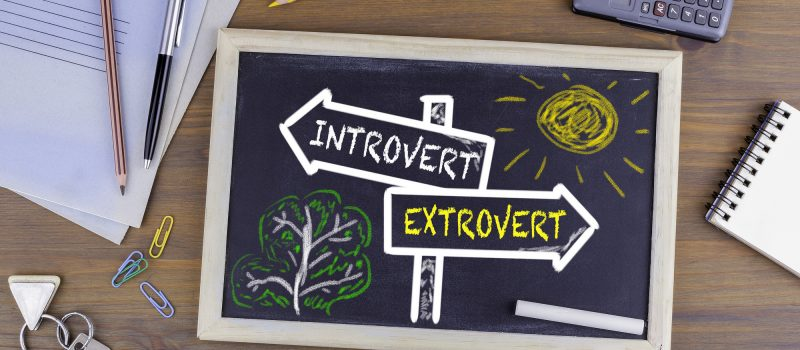 business ideas for introverts