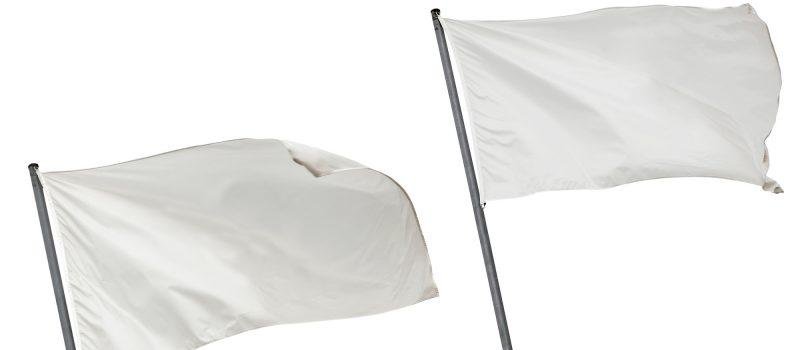 flag ideas