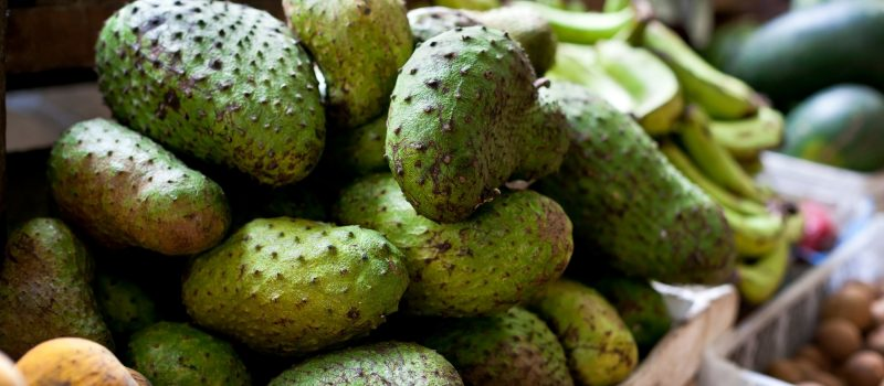 benefits of soursop