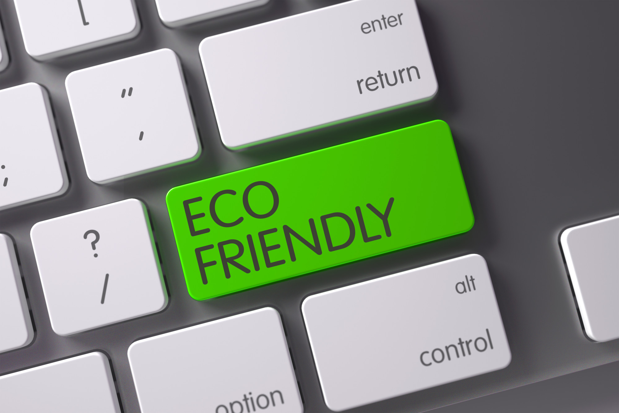 Eco Friendly Companies